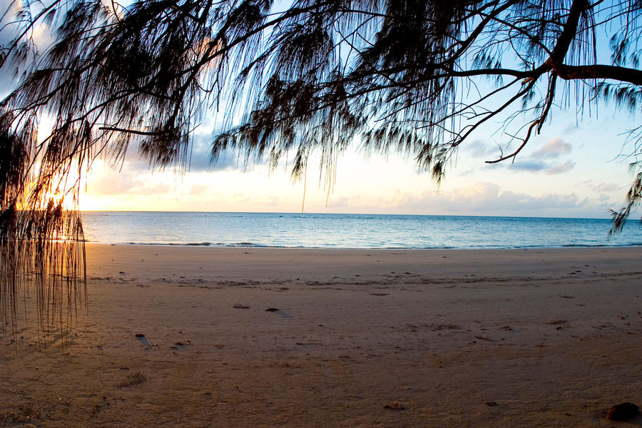 The 9 Best Things To Do In Cairns And Port Douglas